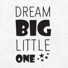 naljepnica dream big